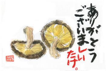 干し椎茸1.jpg