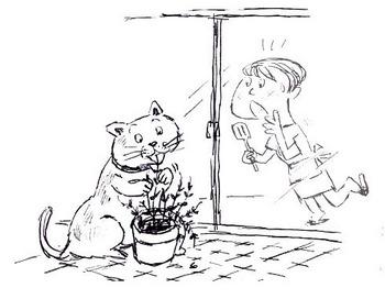 猫がタイムを.jpg